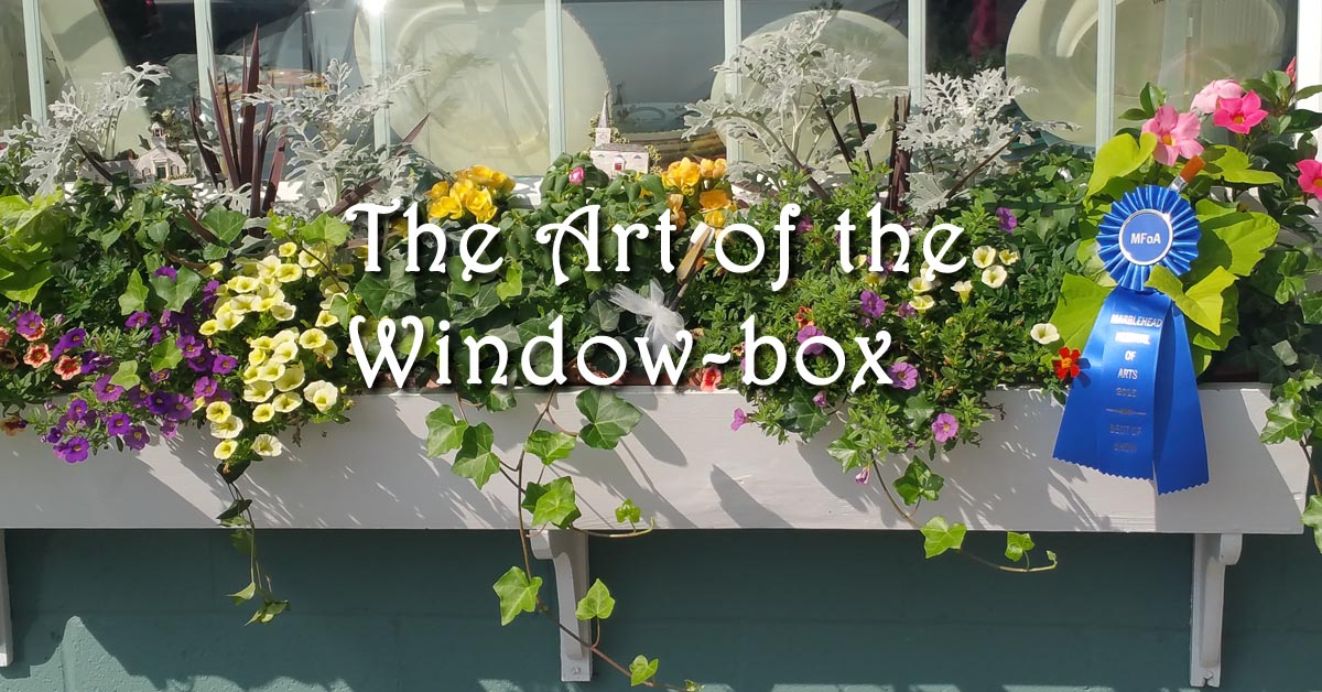 The Art of the Window-Box